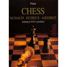 Шахматы: тренинг в 5333 + 1 позиции